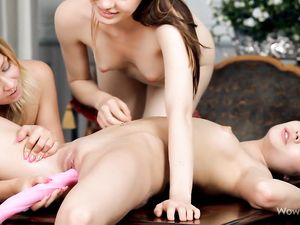 Teen Strips With Her Girlfriends For Toy Fucking Fun